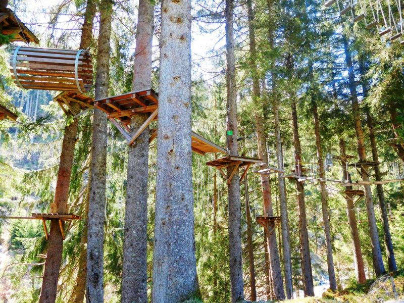 Baumzipfelweg Adventure Park