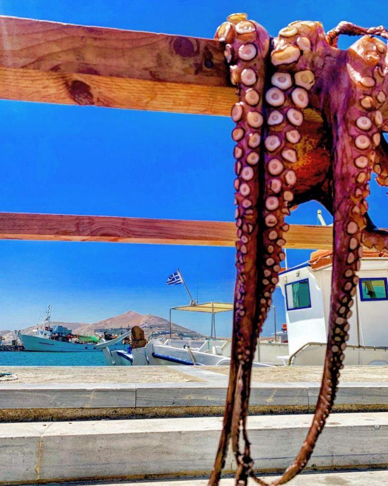 Naoussa Paros Seafood